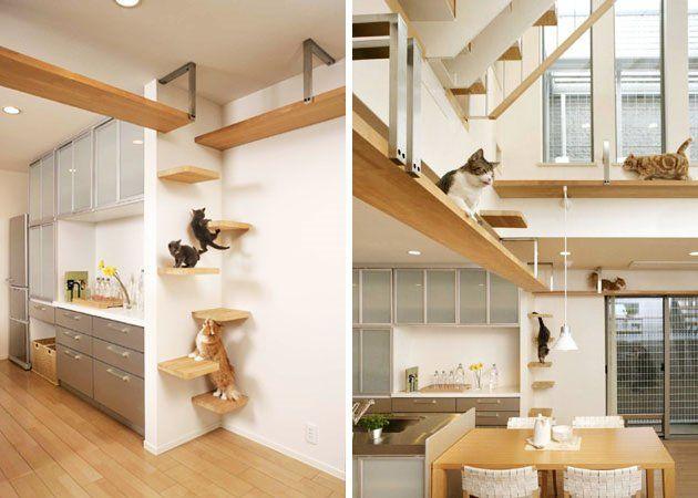 o faire dormir son chat espace chat appartement panier pour chat. Black Bedroom Furniture Sets. Home Design Ideas